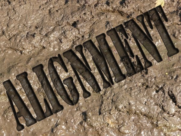 Alignment is a Dirty Word