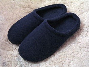 640px-Slippers[2]